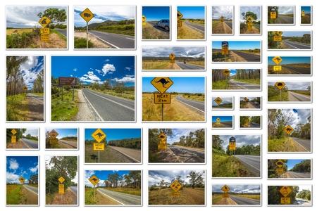 wombat: Australia señales de tráfico collage de canguro, koala, wombat, diablo y la carretera pingüino de cruce en los Estados australiano de Victoria, Nueva Gales del Sur y Tasmania.