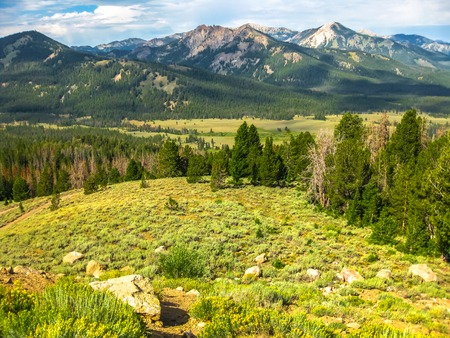 sawtooth national forest: Landscape of the Sawtooth National Forest in the southern Sawtooth Valley, in the heart of Idaho, United States.