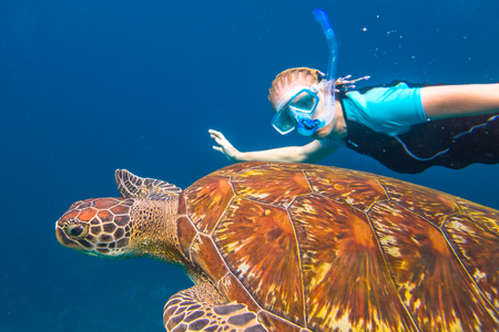 A young woman snorkeler swims with sea turtle Caretta in blue waters of the popular Similan Islands in Thailand, one of the tourist attraction of the Andaman Sea.
