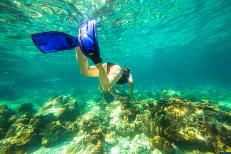 Young female snorkeling in tropical sea. Woman apnea swims in coral reef. Stock Photo
