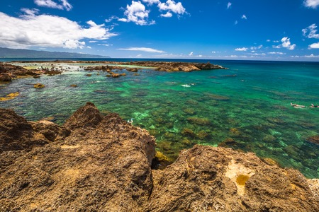 Sharks Cove, one of best scenic stops along the popular North Shore. Sharks Cove is the second best snorkeling site on Oahu, North Shore, and boasts an impressive amount of sea life.