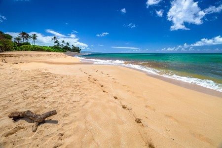 banzai pipeline: Sunset Beach is on the North Shore of Oahu in Hawaii and known for big wave surfing during the winter season. In summer, the sea of Sunset Beach is calm and suitable for snorkeling in the coral reef.
