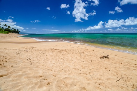 banzai pipeline: Sunset Beach is on the North Shore of Oahu in Hawaii and known for big wave surfing during the winter season with the nearby Banzai Pipeline and Waimea Bay. In summer, the sea is calm and flat.