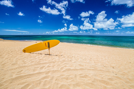 banzai pipeline: Serf rescue in the popular Sunset Beach in North Shore, Oahu, Hawaii in summer.