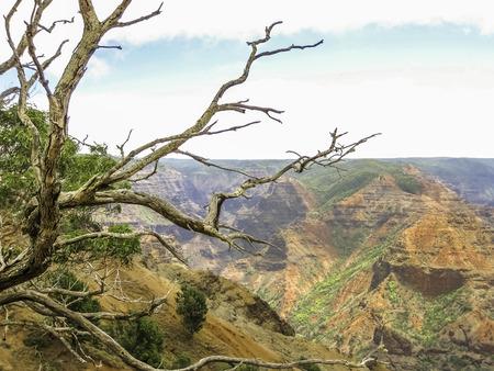 waimea canyon state park: Waimea Canyon State Park in Kauai, Hawaii, United Staes.
