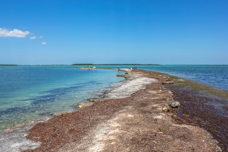 The lagoon landscape of the little visited No Name Key, an island located in the lower Florida Keys in the United States, close to the best known Big Pine Key. No Name Key is famous for the Key Deer. Imagens