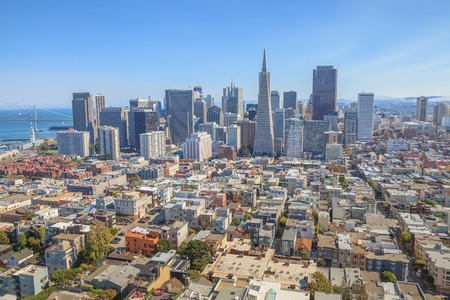 Aerial view of San Francisco Financial District and Transamerica Pyramid from the top of Coit Tower on sunny day, California, United States.