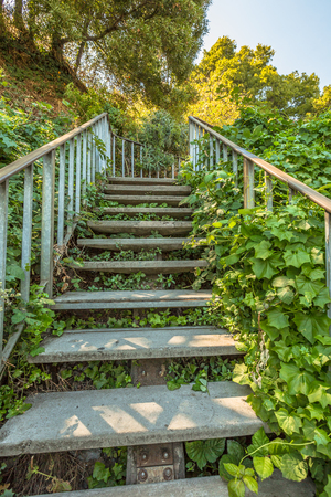 Stairway, Filbert Street Stairs leading up to Telegrapf Hill and Coit Tower, a popular attraction in San Francisco, California, United States. Stock Photo