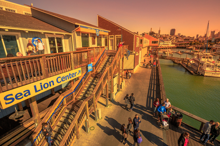 San Francisco, California, United States - August 14, 2016: Aerial view from Sea Lion Center of people and boats docked at Pier 39 Marina at sunset, a popular tourist attraction in San Francisco.