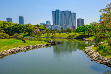 Hamarikyu Gardens is a large and attractive landscape garden in Tokyo, Chuo district, Sumida River, Japan. Oriental japanese garden. The Hama Rikyu is in contrast to the skyscrapers of city. Stok Fotoğraf