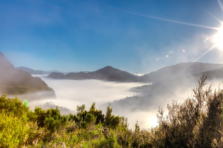 Mystic and surreal landscape with morning fog in the mountains on way to the Cradle Mountain-Lake St Clair National Park, Tasmania, Australia. Copy space. Stock Photo