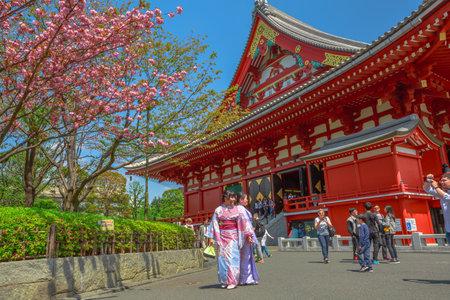 Tokyo, Japan - April 19, 2017: Asakusa popular icons: Kannon Temple in Senso-ji the oldest shrine in Tokyo, cherry blossom in spring sakura, the national flower of Japan and women in japanese kimonos.