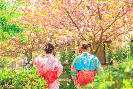 Asian women in traditional kimono take photo of cherry blossom trees along Philosophers walk during Sakura, sping season. The Path is a famous pedestrian path in Higashiyama district, Kyoto, Japan.