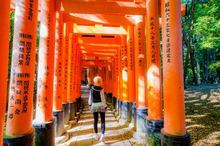 Kyoto, Japan - April 28, 2017: tourist woman walking under red torii gates of famous landmark Fushimi Inari shrine. Travel asia concept. Kyotos popular landmark.