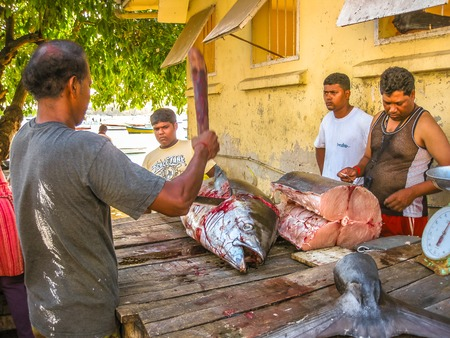 Grand Baie, Mauritius - December 27, 2009: fishermen selling raw yellowfin tuna cuts at the fish market of Grand Baie in Mauritius Island, Indian Ocean.