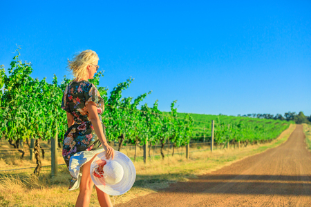 Scenic landscape of vineyard cellar harvest.Beautiful tourist woman walks down a country road alongside a row of white grapes. Wilyabrup in Margaret River known as the wine region in Western Australia