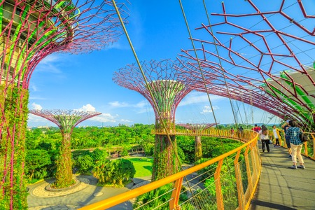 Singapore - April 29, 2018: people walking on skybridge or OCBC Skyway of Supertree Grove in Gardens by the Bay, Marina Bay in Singapore. Famous tourist attraction in marina bay area, Singapore