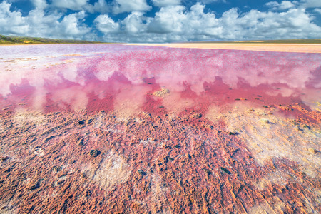 Picturesque shore Pink Salt Lake, Gregory in Western Australia. Blue sky with clouds reflect in Hutt Lagoon between Geraldton and Kalbarri, with a vivid pink color for the presence of algae in summer