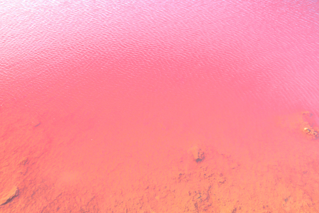Natural pink water backgroung. Close-up of Pink Lake in Gregory, Western Australia. Salt lake or Hutt Lagoon with vivid pink color for the presence of algae in summer.