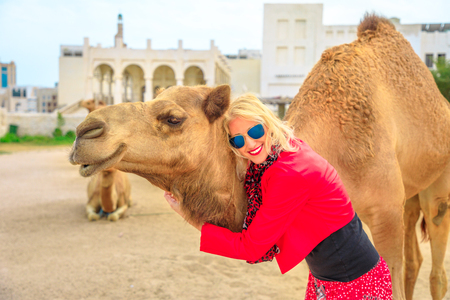 Happy blonde woman embraces a camel in Doha city center, near Souq Waqif, the old market, popular tourist in Al Souq District, Qatar. Caucasian tourist enjoys in Middle East of Arabian Peninsula.