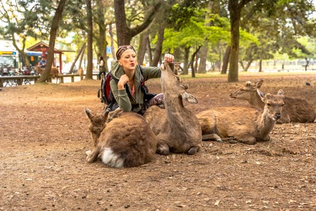 Happy tourist woman kissing popular deer in Nara town of Japan. Tourism in Japan concept and Unesco Heritage.