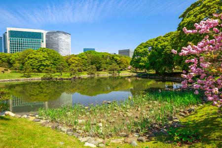 Modern skyscrapers of Shiodome in Shimbashi district reflection in Hamarikyu Gardens lake. Hama Rikyu is a large, attractive landscape garden in Tokyo, Chuo district, Sumida River, Japan.