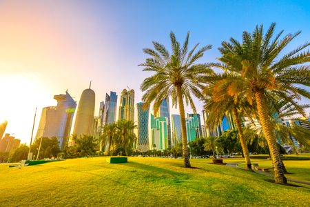 Palm trees in West Bay park along corniche promenade with glassed high rises at sunset on background. Doha skyline, Qatar, Middle East, Arabian Peninsula in Persian Gulf. Scenic urban cityscape.