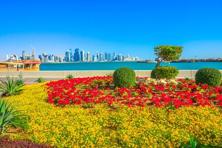 Spring landscape of flower beds and blooming trees on Corniche promenade of Doha Bay in Qatar. Tall skyscrapers of Doha Downtown skyline on distance. Blue sky in sunny day. Copy space. 写真素材 - 128238918