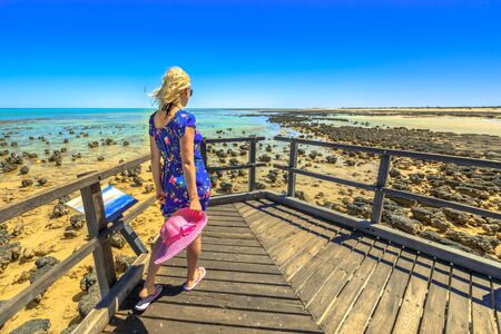 Woman walking on wooden jetty of the Stromatolites Hamelin Pool. Marine Reserve, Shark Bay, Western Australia. following woman in Australian travel destination.