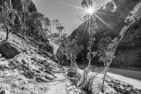 Australian outback landscape. Rays over bush vegetation on dry riverbed of Simpsons Gap in black and white shot. West MacDonnell Ranges National Park, Northern Territory.