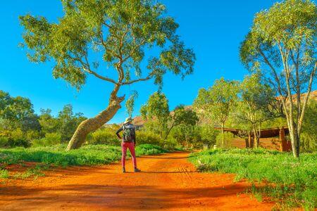 Donna zaino in spalla che cammina sulla sabbia rossa con vegetazione a cespuglio ed esplora il Desert Park ad Alice Springs vicino a MacDonnell Ranges. Turismo nel Territorio del Nord, Australia Centrale.