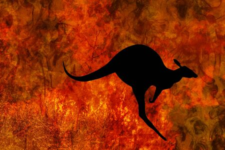 kangaroo silhouette jumping while escaping from a fire in Australia forests. Australian wildlife in bushfires 2019 and 2020. Conceptual:save kangaroos, global warming, natural disaster, climate change