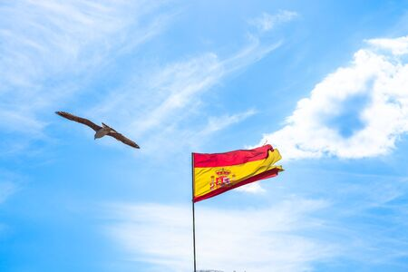 Spanish flag in the sky in with clouds and a seagull flying. Sky background with copy space.