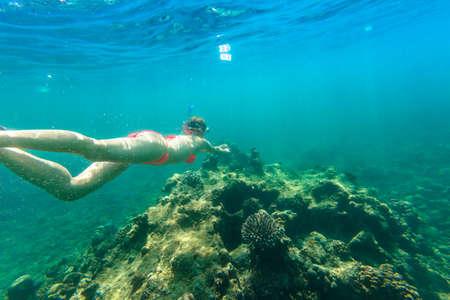 Woman snorkeling in red bikini in coral reef of Surin Islands, Andaman Sea, North of Phuket, Phang Nga in Thailand. Swimming in Ko Surin Marine National Park, underwater scene. Watersport activity.