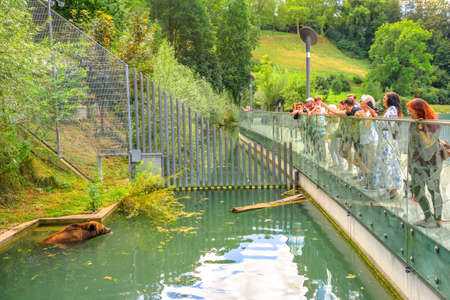 Bern, Switzerland - Aug 23, 2020: tourists looking a bear swimming in inside the Bear Pit, one of the most visited tourist destinations in Bern, Switzerland. The Bear Park overlooks Aare River.