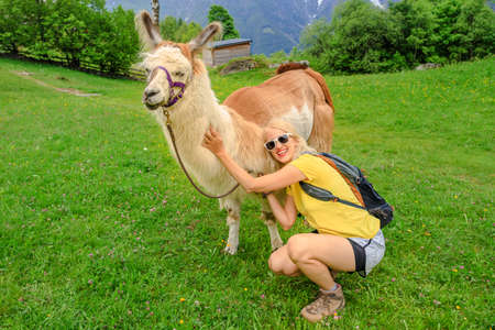 Backpacker woman taking a llama alpaca for a ride on top of Comino mount in Switzerland. Centovalli location in Ticino canton. Top of cable car station: Verdasio-Monte Comino. Stok Fotoğraf