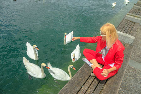 Zurich Lake in Zurich city with blonde tourist woman with white swans in turquoise waters. Lakefront marina with people resting among nature and wild birds. Deutch Switzerland of Canton of Zurich Stok Fotoğraf