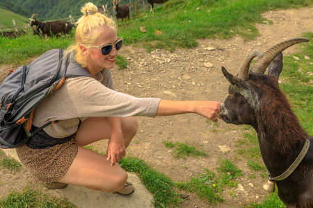 Tourist backpacker woman playing with a goat in Monte Generoso peak. Top of Mendrisio district of Switzerland in ticino canton. Stok Fotoğraf