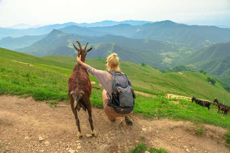 Tourist girl with a friend goat looking Switzerland panorama from Monte Generoso peak. Top of Mendrisio district of Switzerland in ticino canton.