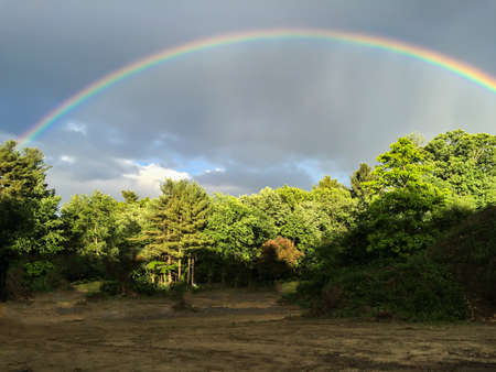 arching rainbow