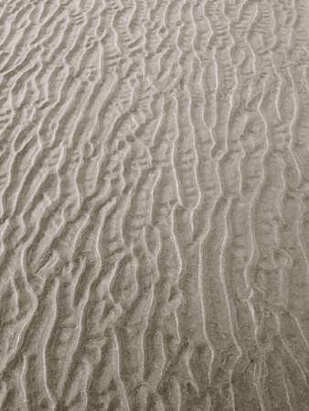Sand wrinkles on Ogunquit Beach Maine