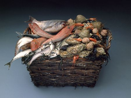 hamper: Hamper height of fresh fish