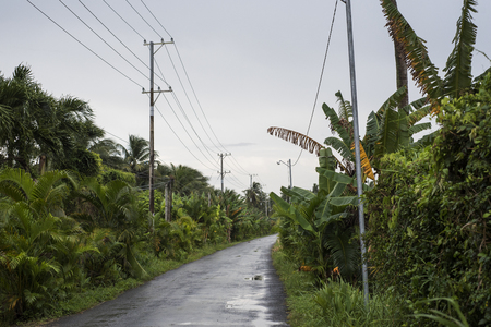 Empty roads in Delta Mekong, Southern Vietnam Stock Photo