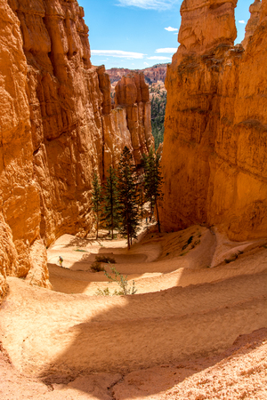 The pathway in Bryce Canyon National Park