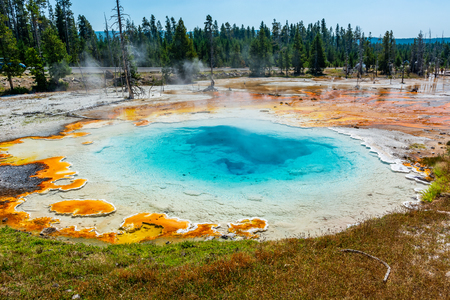 Spring in Yellowstone with Bacteria Mat