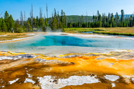 Spring and Landscape in Yellowstone Imagens