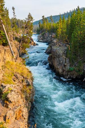 River in Yellowstone Фото со стока