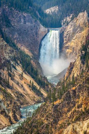 Lower Falls in Yellowstone Фото со стока