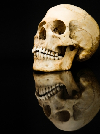 Human skull with mirror image isolated on black photo