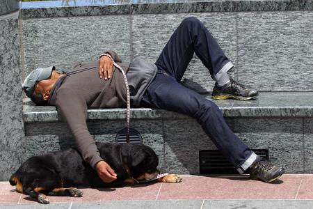 サンフランシスコ、アメリカ合衆国 - 2010 年 7 月 24 日: 公園のベンチで寝ているホームレスの男性。床の上で眠るロットワイラー犬